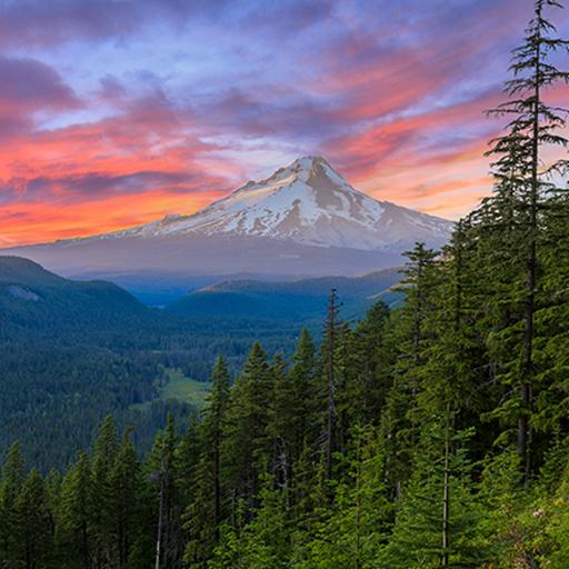 Mountain in Oregon