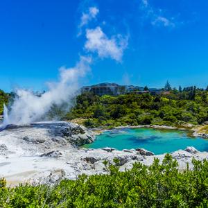 Rotorua Geyser and Mud Pools