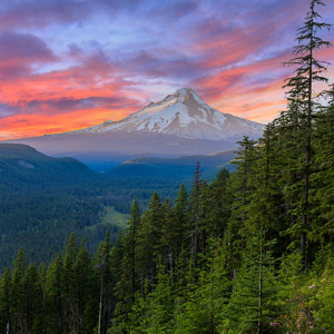 Vista of Mount Hood