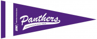 Panthers Pennant