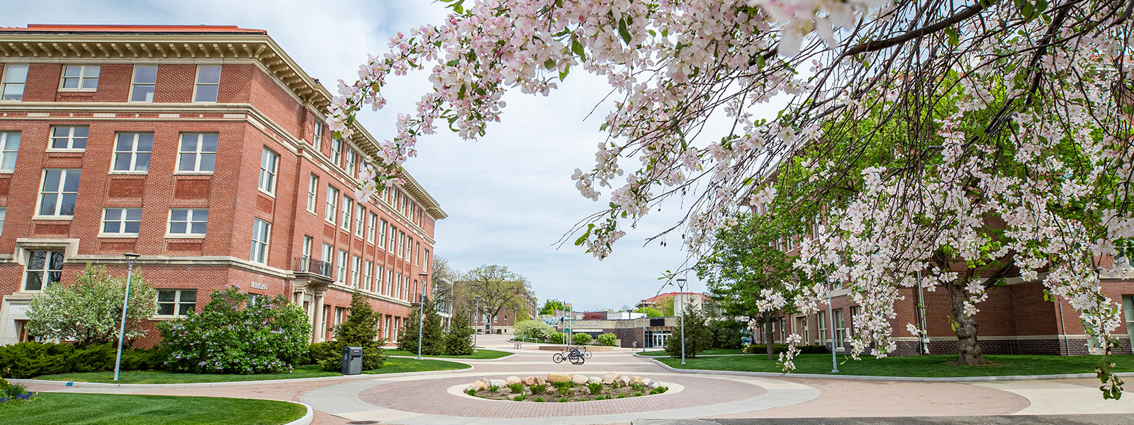 UNI campus in spring looking toward Maucker Union